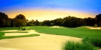 Golf in Dallas During Super Bowl XLV Week
