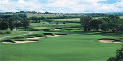 The Bandit Golf Club