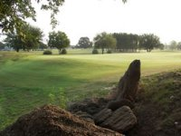 Timber View Golf Club