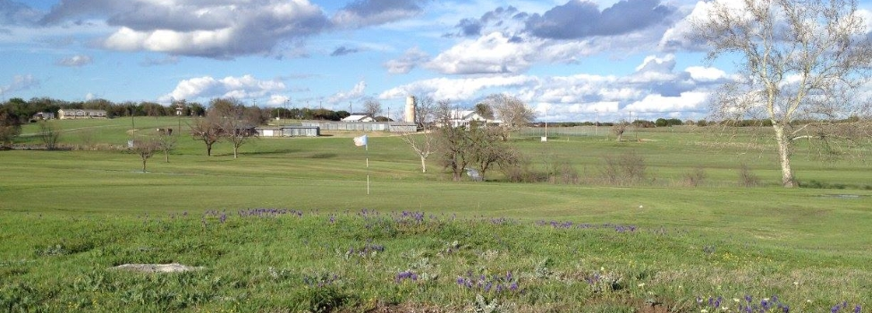 Bluebonnet Country Club