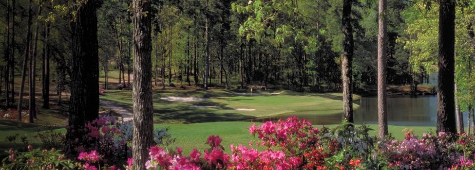 Bluejack national golf in montgomery texas for Bluejack national